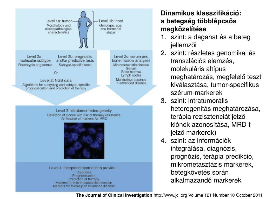 A rektális rák tumoros genetikai heterogenitása