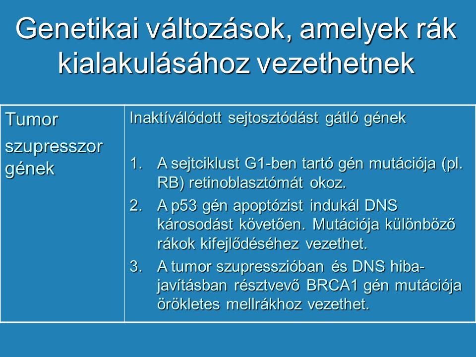 rákos sejtek genetikai változásai)