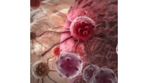 rosszindulatú sejtrák Hogyan hatnak az anthelmintikus gyógyszerek az emberekben