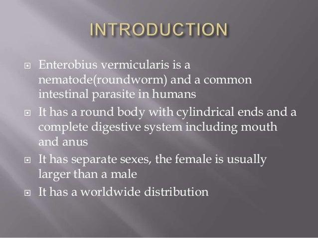slideshare enterobiasis tabletta a helminták testből történő eltávolítására