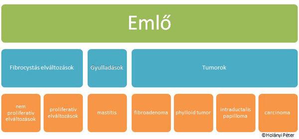 az intraductalis papilloma diagnózisa