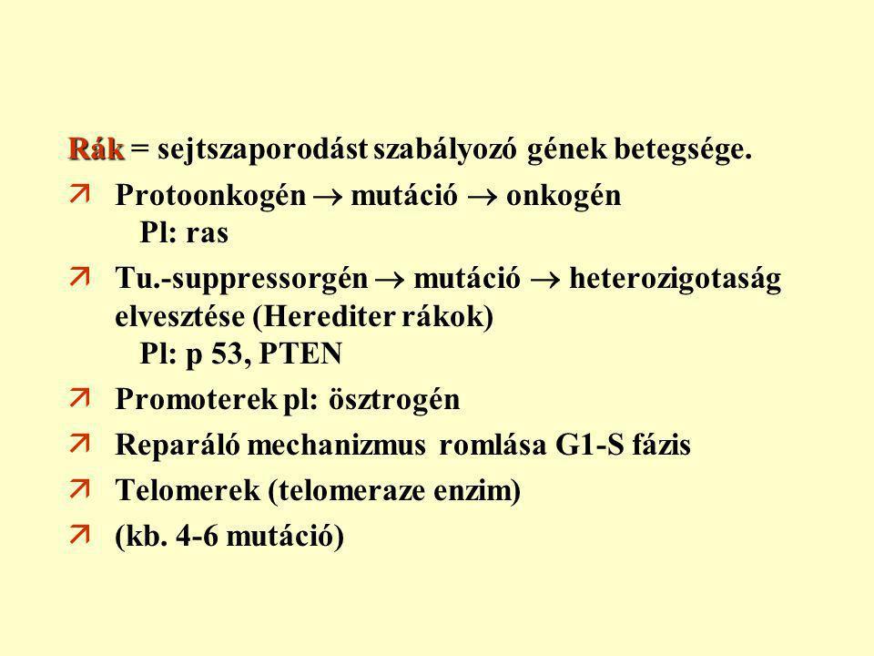 peritonealis rák 4 fázis