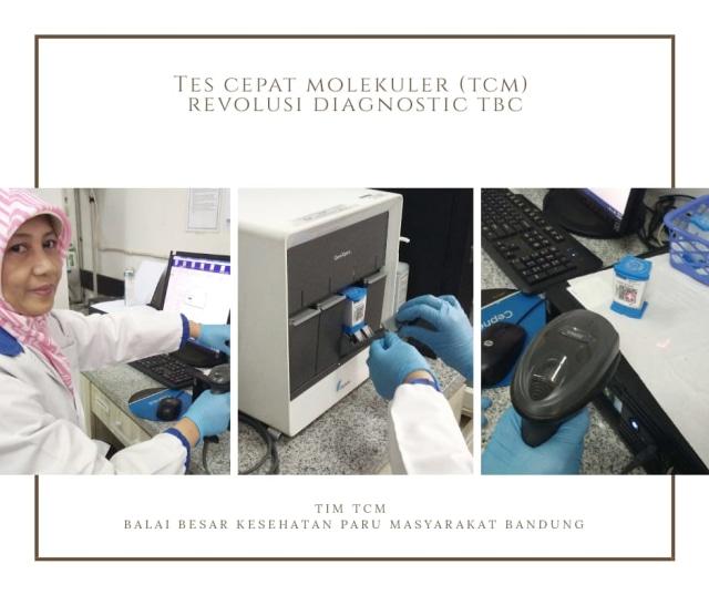 tesztbaktériumok