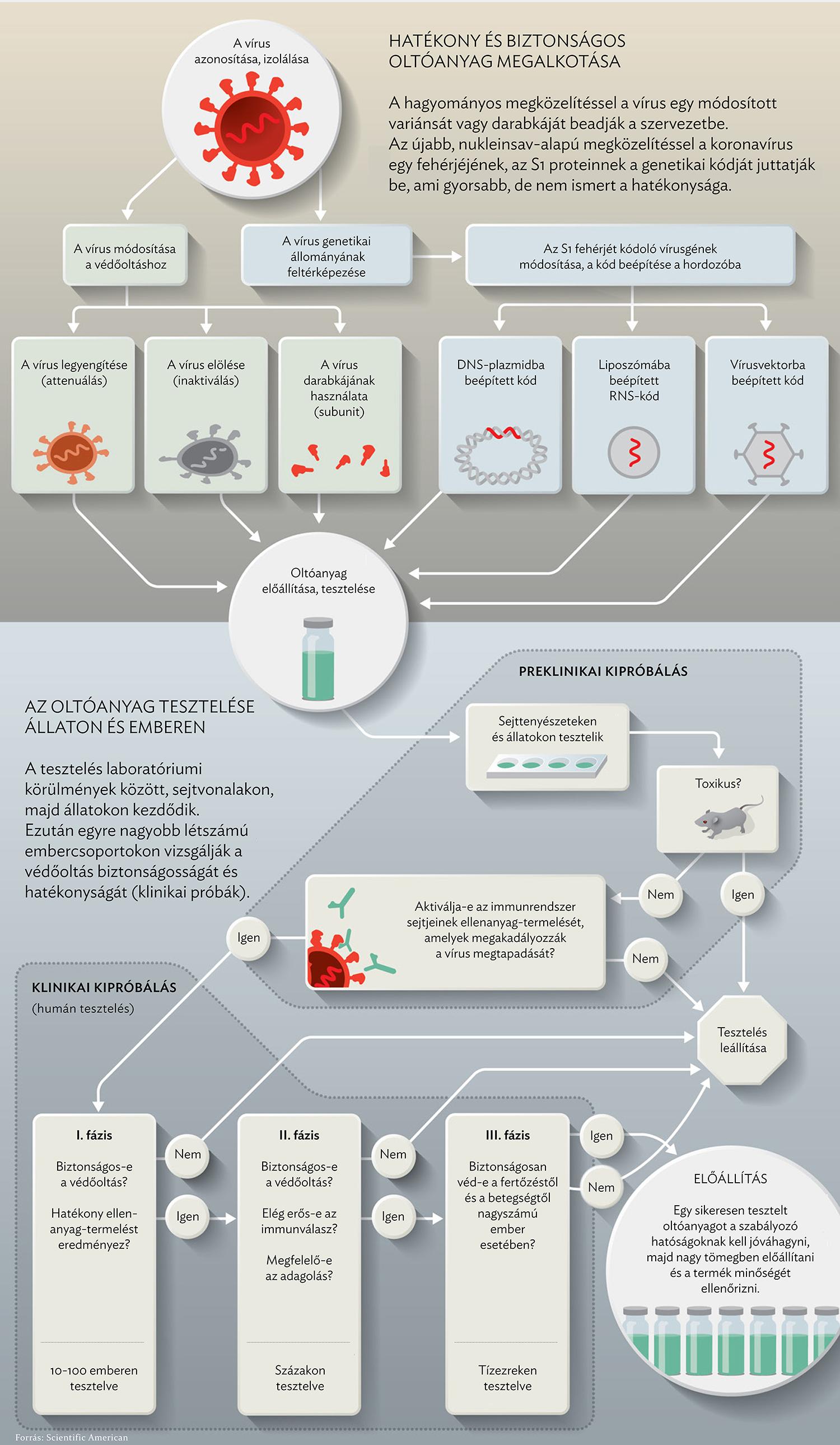 hpv vakcina mennyi gyógyszerek a HPV kezelésére férfiaknál