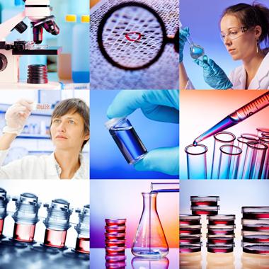 professzionális orvosi rák)