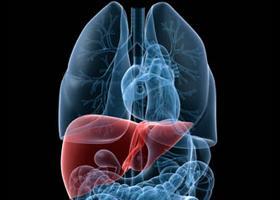 májsejtes rák tünetei