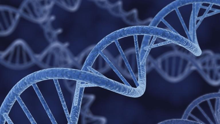 a rák genetikai hajlamú)