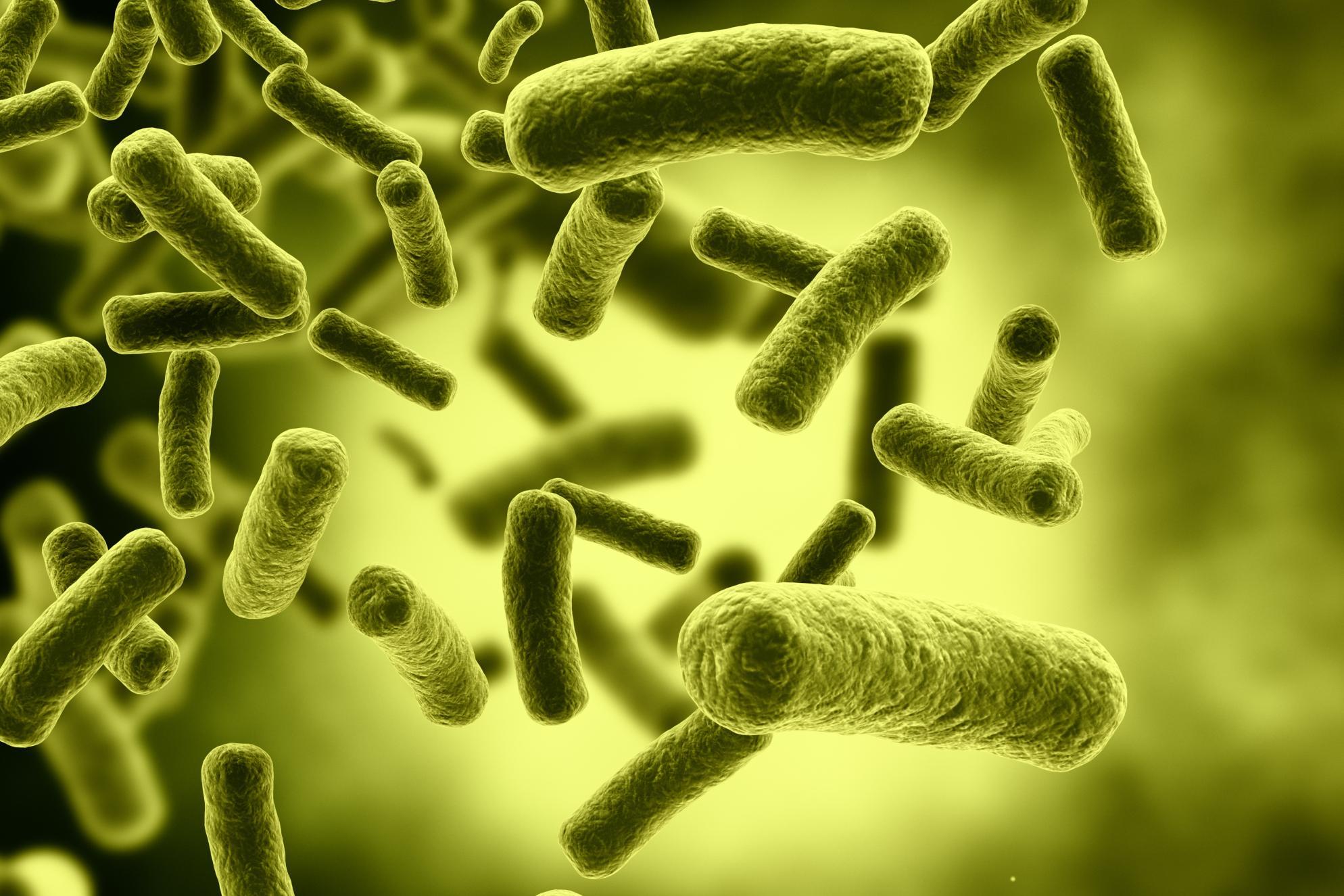 Milyen veszélyt okoznak a szájban található baktériumok?