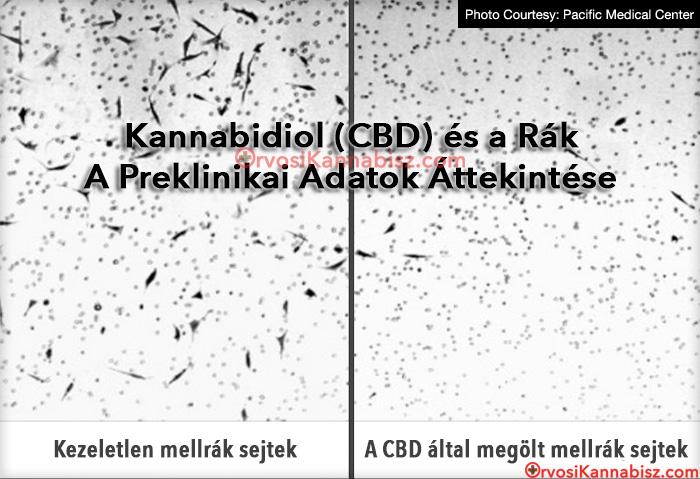 Ayurvédikus giardia kezelés foltok a papillómák eltávolítása után
