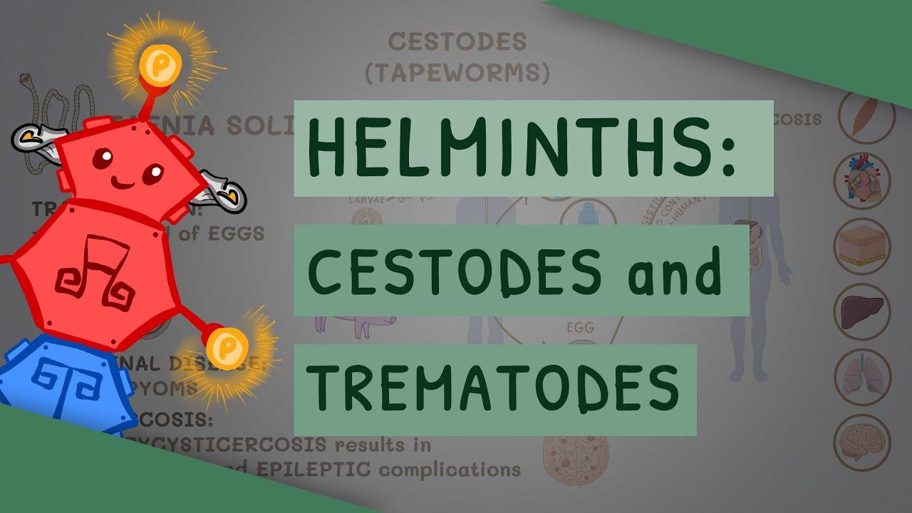 Helminthiasis kezelési rend