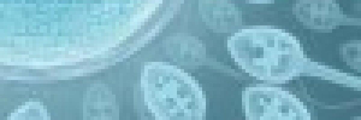 a papilloma vírus befolyásolja a termékenységet