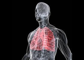 Súlyos betegségek, amiket elkaphatunk kedvenceinktől