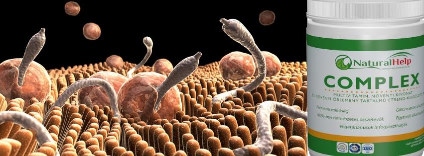 jó gyógymód az emberi paraziták ellen vélemények a papilloma alkalmazásához