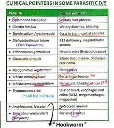 enterobiasis vs amoebiasis)