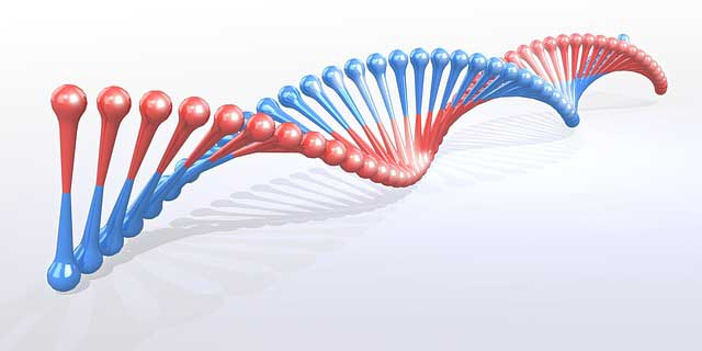 genetikai mutációkat okozó rák)