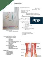 Emlőrákszűrés - Önvizsgálat, mammográfia, ultrahang