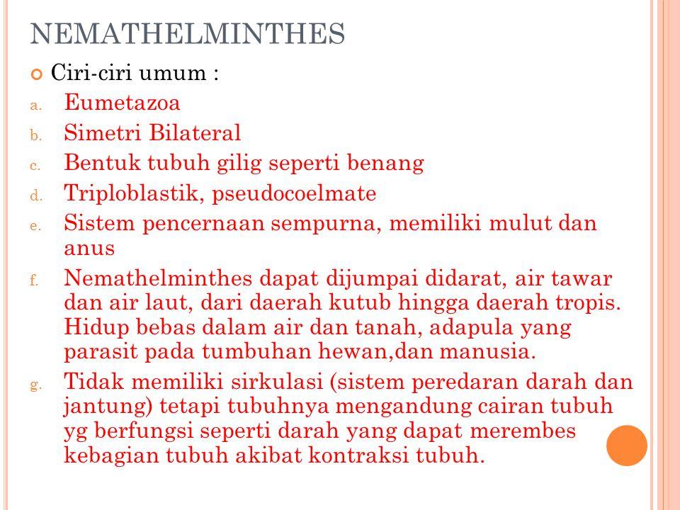 les nemathelminthes ppt)