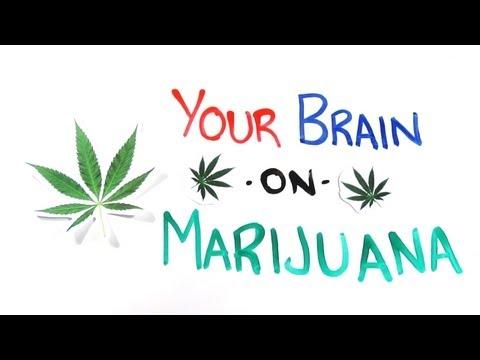 növényi kiegészítők marihuána méregtelenítéshez