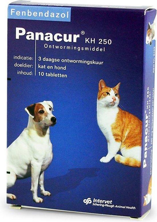 Behandeling giardia kat panacur Giardia hond symptomen